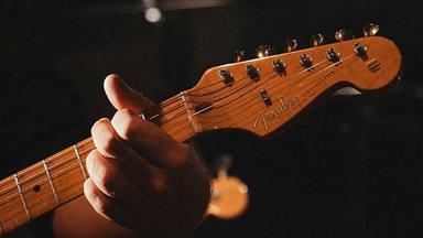 El cambio climático pone en jaque a las marcas de guitarras: sin fresno verde, no habrá Fender